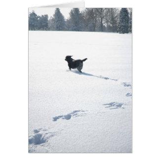 Juegos negros de Labrador en la nieve Tarjeta