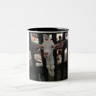 juegue la cabra taza dos tonos