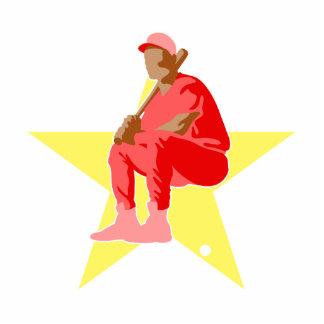 Jugador de béisbol de All Star Esculturas Fotográficas