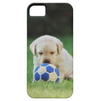 Jugador de fútbol del laboratorio iPhone 5 Case-Mate cárcasas