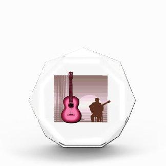 jugador de la guitarra acústica que sienta pink.pn