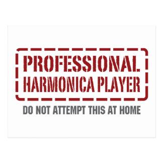 Jugador profesional de la armónica tarjeta postal