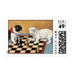 jugadores de ajedrez de los gatos del sello