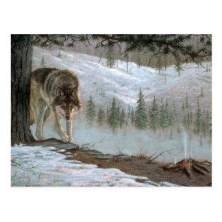 Jugándolo caja fuerte, lobo de madera tarjetas postales