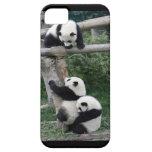 Jugar el caso de las pandas iPhone5/5s Funda Para iPhone SE/5/5s