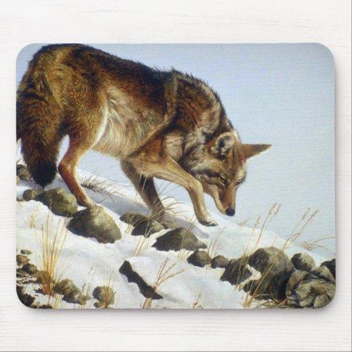 Jugar el oposum, coyote alfombrillas de raton