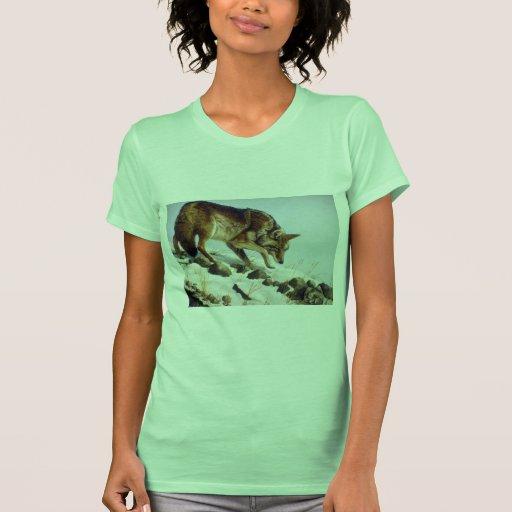 Jugar el oposum, coyote camisas