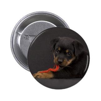 Jugar el perrito 5 pin redondo de 2 pulgadas