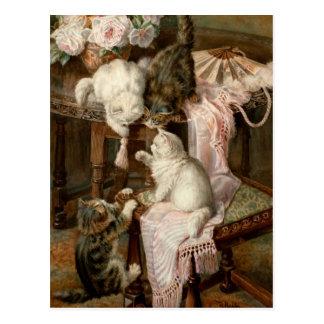 Jugar gatitos tarjeta postal
