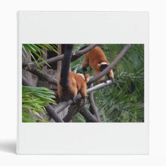 Jugar Lemurs hinchados rojo de los primates