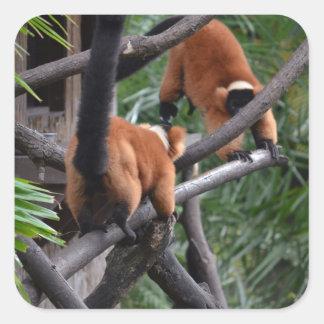 Jugar Lemurs hinchados rojo de los primates Pegatinas Cuadradas Personalizadas