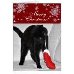Jugar navidad del gato felicitaciones