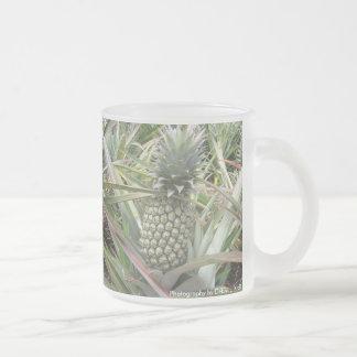 Jugo de piña - actualizado tazas de café