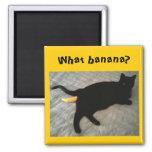 Juguete que falta del gato del plátano imán de frigorífico