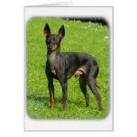 Juguete Terrier inglés 9R78D-77 Felicitacion
