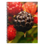 Juicy notes spiral notebook
