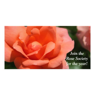 Juicy Orange Rose Personalized Photo Card