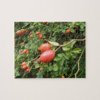 Juicy Red Rose Hips Puzzle