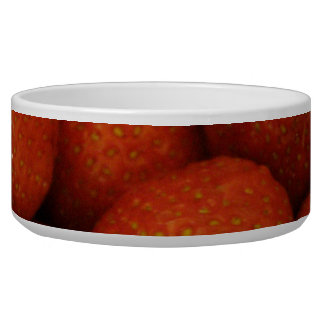 Juicy Strawberries Dog Bowl