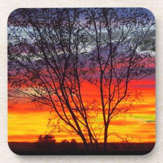 Julia Creek sunset silhouette coaster set