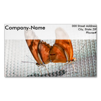 Julia Heliconian Dryas Julia Business Card Magnet