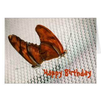 Julia Heliconian Dryas Julia Card