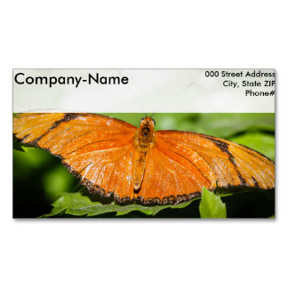 Julia Heliconian Dryas Julia Magnetic Business Card