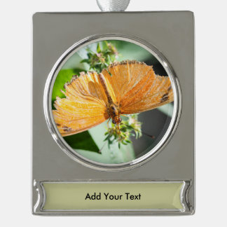 Julia Heliconian Dryas Julia Silver Plated Banner Ornament