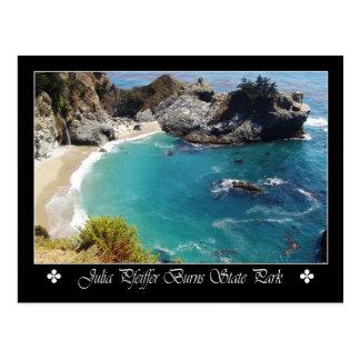 Julia Pfeiffer Burns State Park, California Postcard