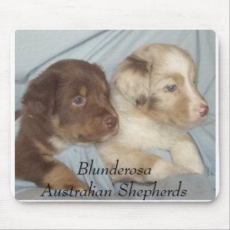 Julie2007pups3, BlunderosaAustralian Shepherds Mouse Pad