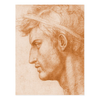 Julio César de Andrea del Sarto Postal