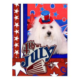 July 4th - Coton de Tulear - Claire Postcard