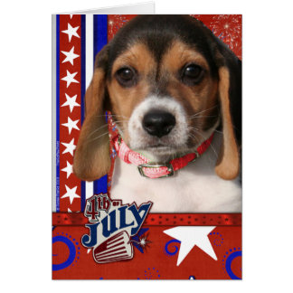 July 4th Firecracker - Beagle Puppy Card