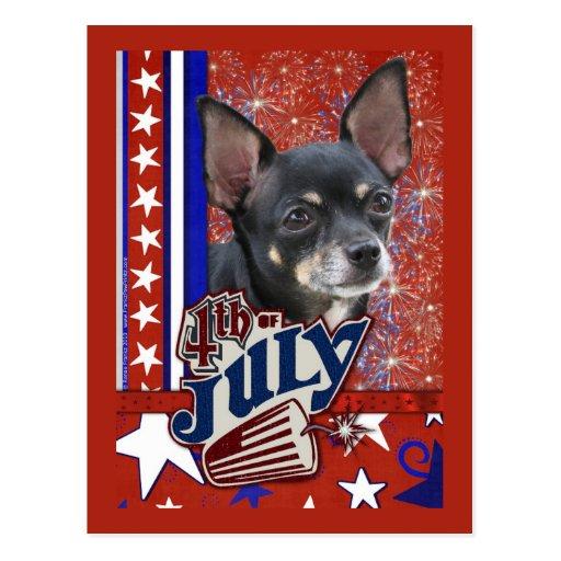 July 4th Firecracker - Chihuahua Postcard
