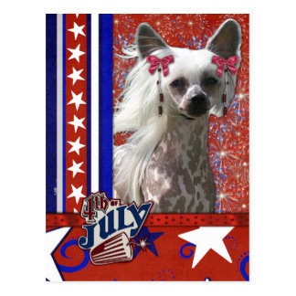 July 4th Firecracker - Chinese Crested - Kahlo Postcard