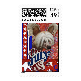 July 4th Firecracker - Chinese Crested Postage Stamps
