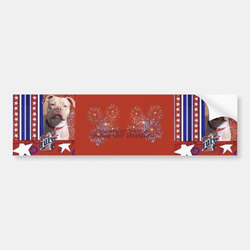 July 4th Firecracker - Pitbull - Jersey Girl Bumper Sticker