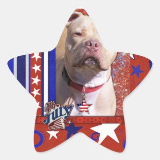 July 4th Firecracker - Pitbull - Jersey Girl Star Sticker