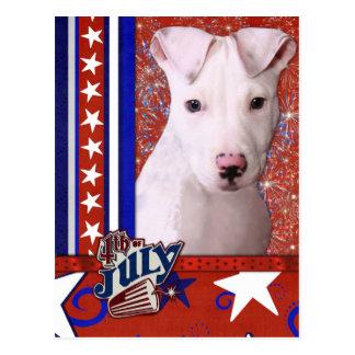 July 4th Firecracker - Pitbull Puppy - Petey Postcard