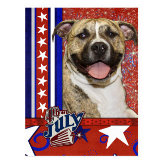 July 4th Firecracker - Pitbull - Tigger Postcard