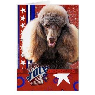 July 4th Firecracker - Poodle - Chocolate Card