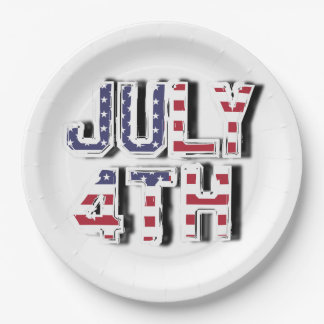 July 4th paper plate