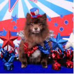 July 4th - Pomeranian - Fred Acrylic Cut Out
