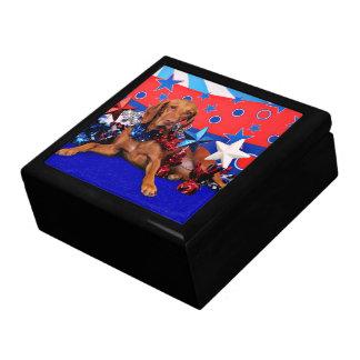 July 4th - Vizsla - Reagan Gift Box