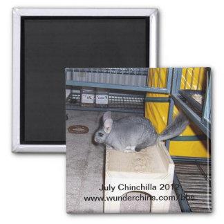 July chinchilla 2012 magnet