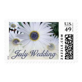 July Daisy Wedding Postage Stamps