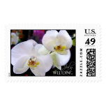 July wedding orchids Wedding Postage