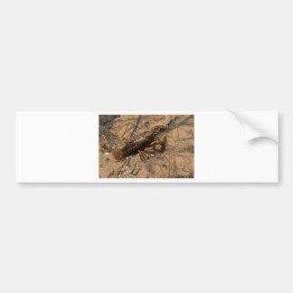 Jumbo Alabama Crawdaddy Critters Bumper Sticker