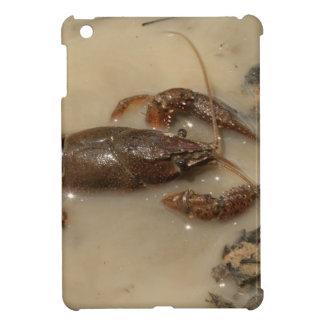Jumbo Alabama Crawdaddy Crustaceans Cover For The iPad Mini