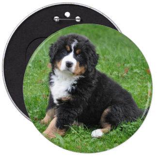 Jumbo custom photo pet pin, love your dog! button